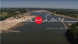 Saint-Léonard-des-Bois par vue sur loire