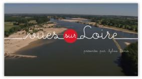 Alpes mancelles activités : Vues sur Loire : Dans les Alpes Mancelles et Fresnay-sur-Sarthe - FRESNAY-SUR-SARTHE, SAINT-LÉONARD-DES-BOIS, SAINT-CÉNERI-LE-GÉREI, FYÉ - aventure, culture & patrimoine, information, musée, randonnée, sport, vidéos
