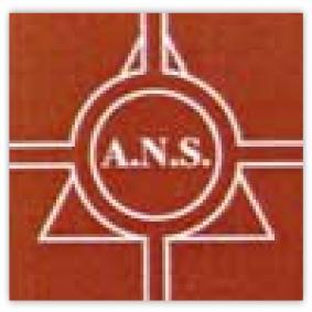 Association des Artistes du Nord Sarthe (ANS) -